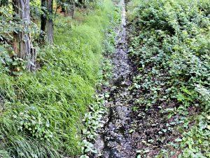 Stoppt das Hochwasser
