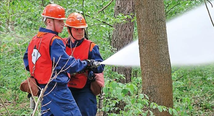 zwei Feuerwehrmännder im Wald